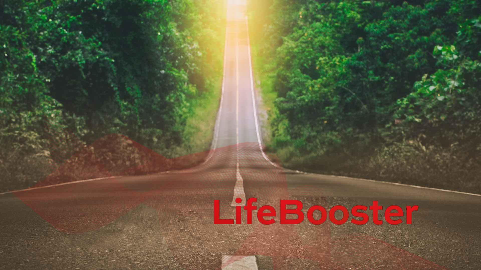 LifeBooster   Krisenwandler