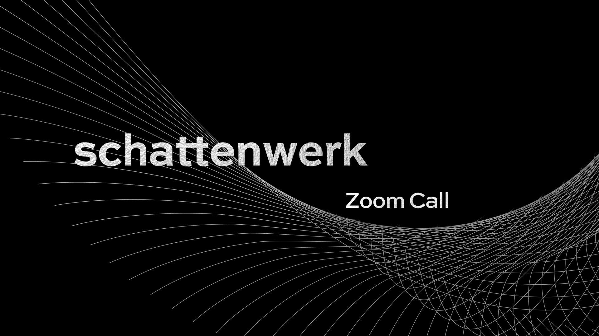 schattenwerk-Zoom-Call